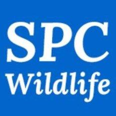 www.spcwildlife.co.uk