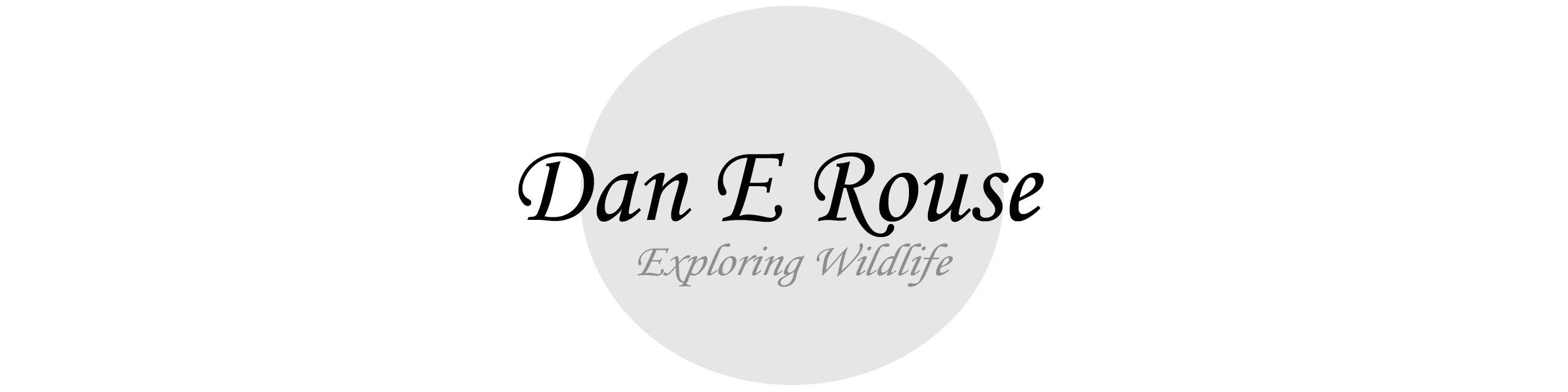 Dan E Rouse
